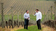 Winemaker Paul Bridgeman and chef Teage Ezard among the vines at the Yarra Valley site where the new Ezard @ Levantine ...