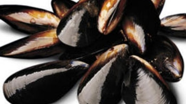 Catalan-Style Mussels