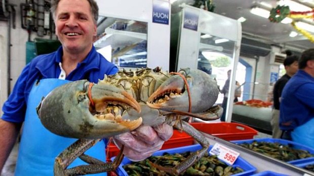 Impress with something different this Christmas ... Con Doukas from Musumeci Seafoods holds up a large mud crab from ...