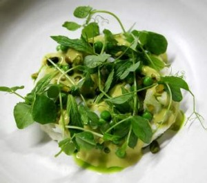 Go-to dish ... salt cod, green peas, mint vinaigrette and pea shoots.