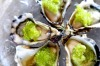Oysters with cucumber and finger limes. <a ...