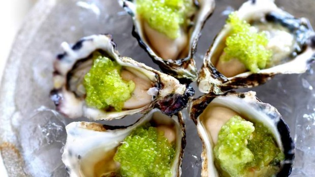 Oysters with cucumber and finger limes.
