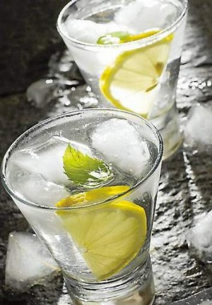 A gin and tonic was one of Ernest Hemingway's preferred tipples.
