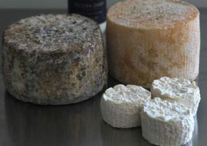 Fresh and seasonal ... Cheese from Pecora Dairy.