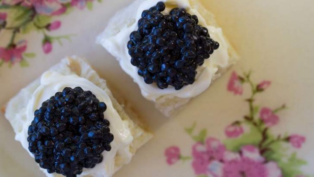 "Avruga ""caviar"" with creme fraiche on toast."