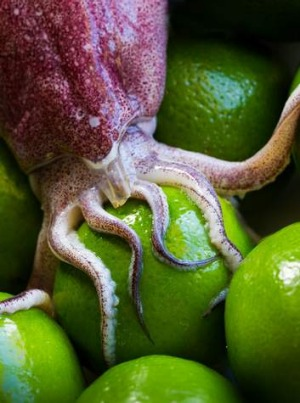 Squid and limes, which together say Thai salad.