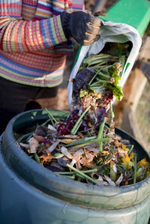 Compost is the most obvious way to get rid of fruit and vegetable scraps.