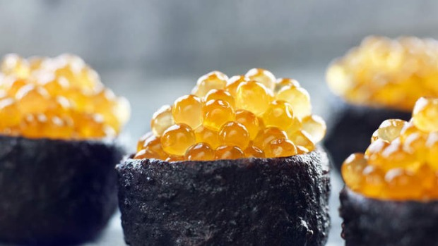 Innovative: Faviken's wild trout roe in a crust of dried pig's blood.
