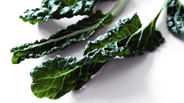 Silverbeet has a deep earthy flavour and a wonderful bitter sweetness.