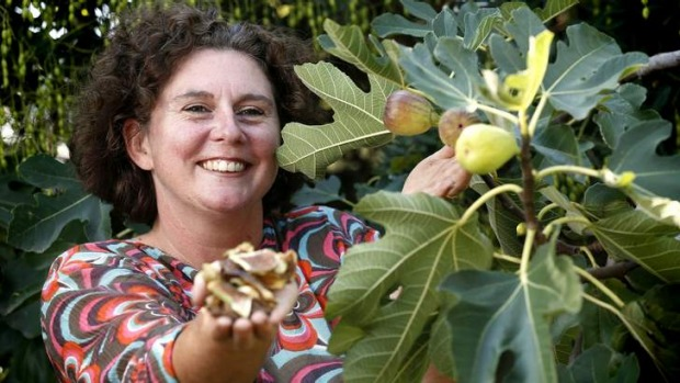 Jacki Warburton from Oxley with some of her dehydrated figs in her garden.