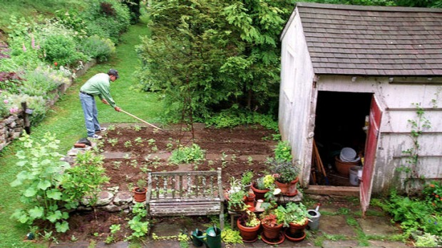 Garden delights: The author tends his field of dreams.