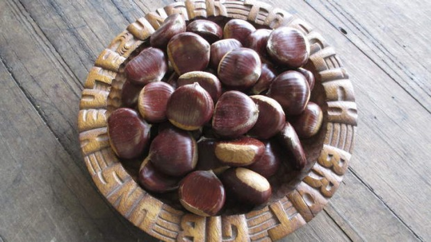 Chestnuts from Growlers Creek Grove in Victoria.