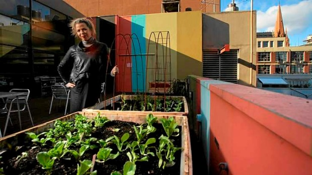 Architect Rebecca Daff at the rooftop veggie garden of her firm.
