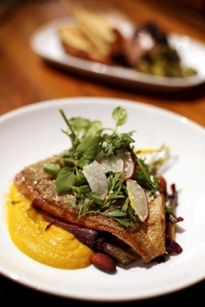 Grilled market fish of the day with roasted heirloom carrot salad, toasted almonds and carrot puree.