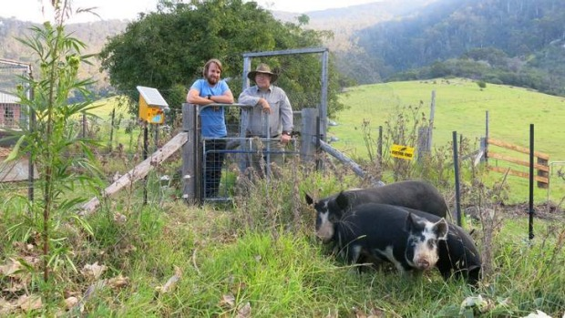 River Cottage Australia's Paul West with Tilba pig farmer Martyn Noakes.