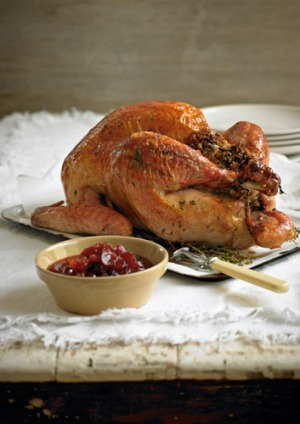 Roast turkey with traditional stuffing and cranberry sauce ...
