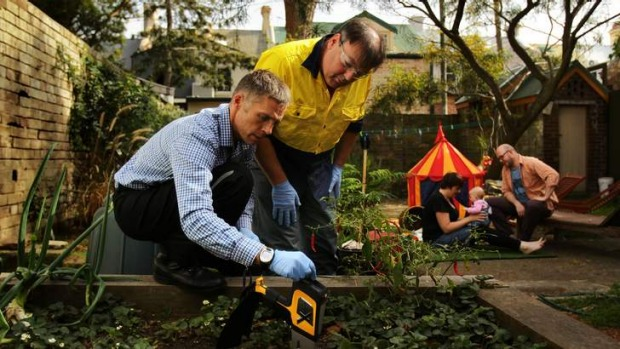 Dirty bomb: Mark Taylor and Damian Gore test the soil in the backyard of Tilly Boleyn and Rick Calder (in background ...