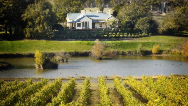 Top soil: Josef Chromy Wines, near Launceston, outshone the best that Burgundy and all the world's other great ...