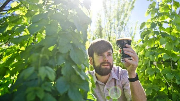 Seeing the light ... Canberra brewer Kevin Hingston loves to experiment with flavours as a small batch brewer.