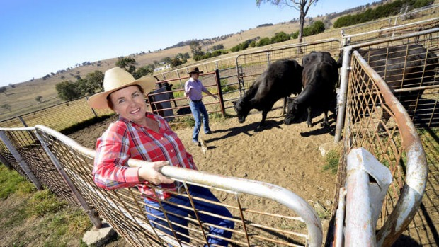 Increasing demand: Sheri Fogarty and her daughter Kristy, on the family cattle farm, Tressa Vale, at Woolbrook, hope to ...