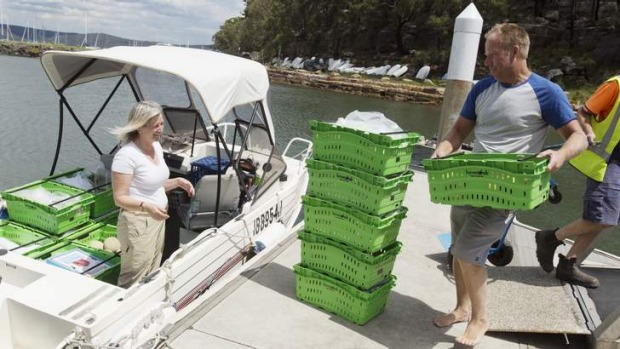 Fresh delivery: Jane Drummond and Andrew Knight look after the Dangar Island Harvest Hub.
