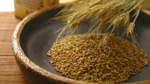 Middle Eastern superfood: Freekeh, or green wheat grain.