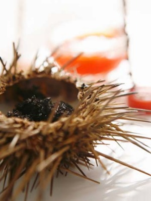 Offer a selection of raw seafood: Try a canape of sea urchin.