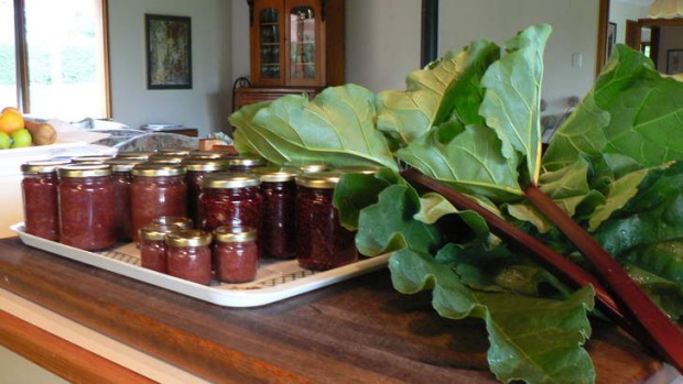 Rhubarb chutney and fresh rhubarb in the country kitchen at Mia Mia.