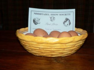 "Six prize winning brown eggs from Elaine Lawson's property ""Erindale"" at Nimmitabel."