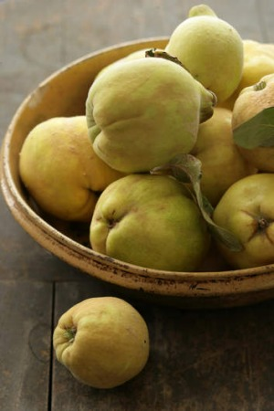 Quinces: Now ripe and fragrant.