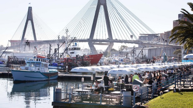 Eat a seafood feast at the Sydney Fish Market and keep an eye out for the visiting pelicans.