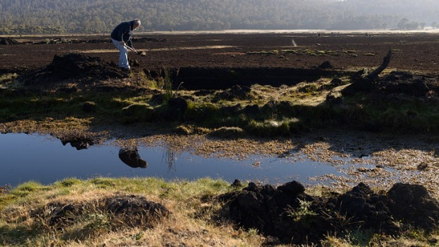 Bill Lark coopering at a peat bog in the Tasmanian highlands.