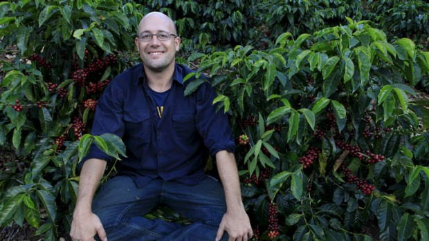 Roasting hot: Toby Smith now has his own plantation in Panama.