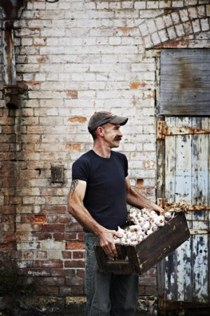 Organic farmers, such as Tim Wyatt, have rules on how they can control pests.