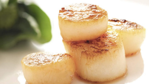 Delicate: Pan-seared sea scallops.