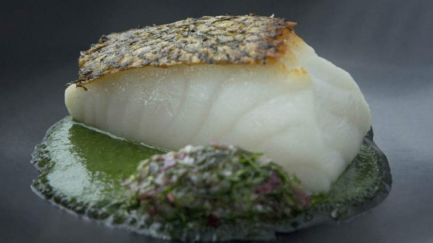 Glacier 51 toothfish, nettle butter, sea grapes and persillade.
