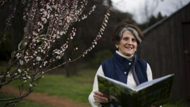 Let's do the thyme walk again: Danielle Hyndes in the orchard at Calthorpes' House in Red Hill perusing the ...
