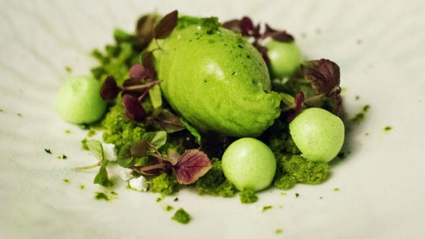 Flavour landscaping: the 'Evergreen' dish includes sorrel, lemon basil, mint, shiso, parsley.