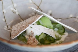 Cucumber and buttermilk sorbets with vanilla meringue.