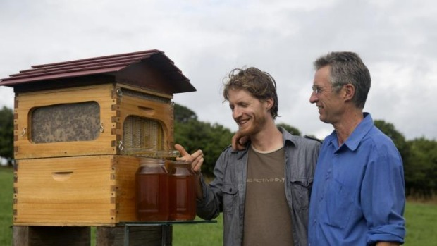 The Andersons and their Flow beekeeping system.