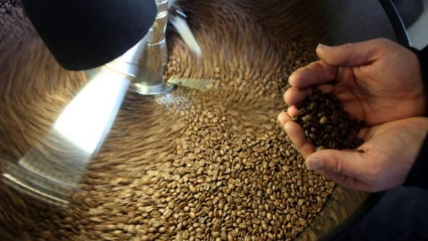 Around the world last year about 1,269,480,000,000 cups of coffee were drunk.