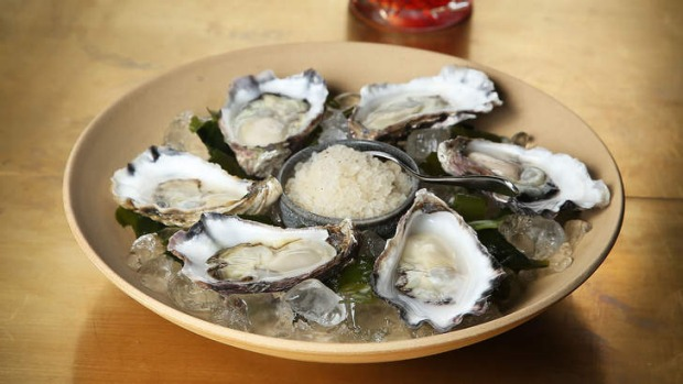Prodded to perfection: Sydney rock oysters.