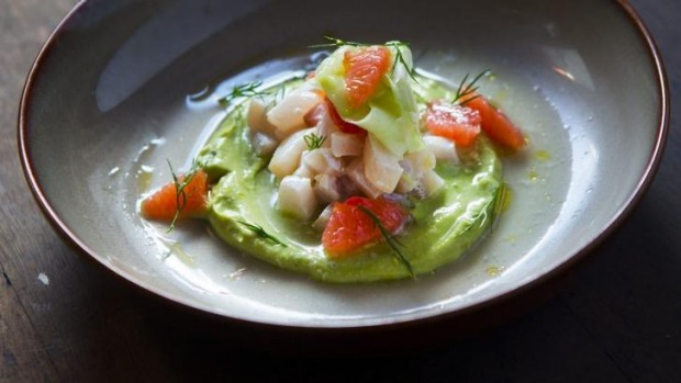 Kingfish ceviche with avocado cream, grapefruit and cucumber dressing.