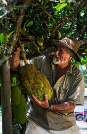 Peter Salleras with some of his tropical fruit.