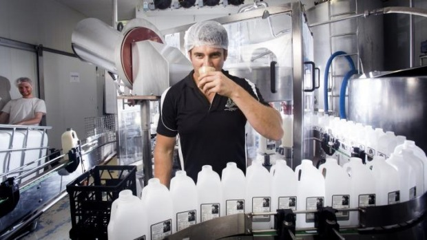 Ben Evans produces 37,000 litres of milk a week at his small scale dairy operation.