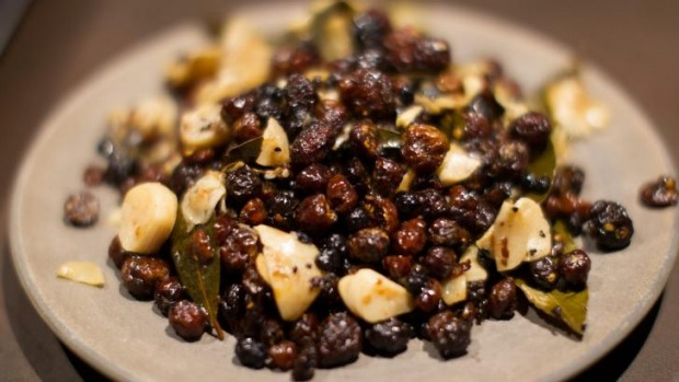 The native bunya nuts used by Noma in Sydney.