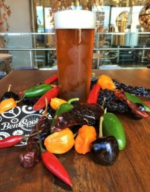 Chilli beer from BentSpoke Brewery for the National Multicultural Festival in Canberra