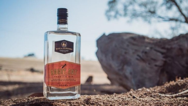 2016 MFWF Angry Ant Gin will be launching at Melbourne Museum's Bugs Alive! exhibition.