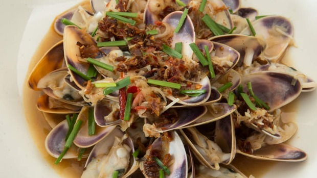 Pippies in XO sauce.