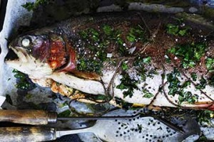 Whole baked ocean trout.